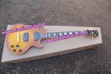 Тип Lp изготовленный на заказ/гитара Afanti электрическая (CST-193)