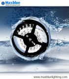 Het waterdichte IP68 Flexibele LEIDENE IP65/IP67/Licht van de Strook