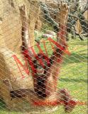 猿のケージの網