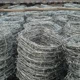 エレクトロによって電流を通される有刺鉄線の網