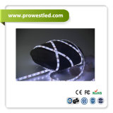 Ökonomisches DC12V 60*SMD2835 zu Replace SMD3528 Single White LED Strip LED Neon Flex