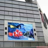 El panel profesional cuadrado grande de la tarjeta del surtidor LED de C8s Skymax China con la ISO de la UL RoHS de la FCC del Ce