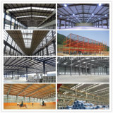 El taller de la estructura de acero del palmo grande vertió con alto de calidad standard