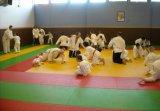 Qualitäts-Kinder, die EVA-Schaumgummi-Judo Tatami Matte für Schule blockieren