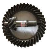 Ingranaggi conici elicoidali dei ricambi auto degli ingranaggi conici di spirale dell'asse di azionamento della parte posteriore dell'attrezzo di Isuzu del camion del metallo di precisione BS5031 8/39