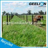 Лошади скотин Австралии загородка фермы стандартной пластичная