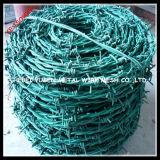 Зеленый пластичный (PVC) покрытый ограждать провода