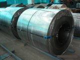 Cold Rolled Steel Coil (FOB, CFR, EXW, CIF)