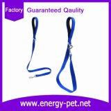 Collar de perro de la correa del animal doméstico del llano del precio de fábrica y correo de nylon
