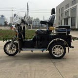 年長者(DTR-6)のためのPetrol著無効三輪車