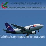 Federal Express do competidor Express From China a Alemanha