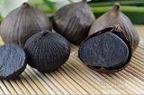 Het heerlijke Zwarte Deeg van het Knoflook voor Culinair