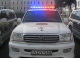 LEIDENE Lichte Staaf Tbd335124