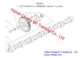 Asamblea Yc6j190-20 del árbol de levas de la pieza del motor para Chang un omnibus Sc6910