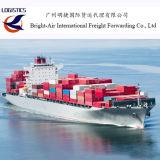 Agentes de transporte logísticos livres do mar do remetente do armazenamento e da inspeção dos bens de China a Europa