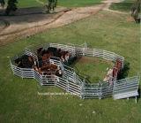 Os painéis galvanizados da cerca do MERGULHO quente, rebanhos animais Metal a porta da cerca da exploração agrícola