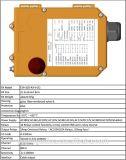 Regolatore a distanza superiore F24-10d di Telecrane di doppia velocità della Manica di vendita 10