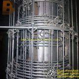 Contrôle d'inducteur/ferme/frontière de sécurité animale de treillis métallique de butoir/cerfs communs