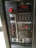 トロリーが付いているFeiyang/Temeisheng/Kvg Rechaergeble安いLound Bluetoothのスピーカー----F78d