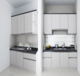 Cozinha branca elegante da laca 2016