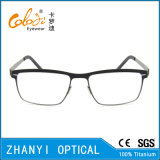 Leichte Betatitanbrille (9116)