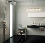 600X600 Súper Negro porcelánico pulido azulejo de suelo (WT-6880)