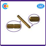 Panneau en acier inoxydable / 4.8 / 8.8 / 10.9 Pin galvanisé non standard pour les vis de fixation des machines / industries