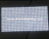 Módulo ao ar livre e interno de P10 único da cor de diodo emissor de luz do indicador