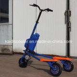 3 rotelle che piegano il motorino di spostamento del motore di mobilità elettrica senza spazzola del motociclo