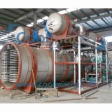 Dessiccateur de congélation de vide de figue/dessiccateur de gel industriel vide de figue