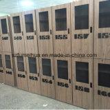 Casiers propres faciles de couleur de fibre de bois de blocage d'IDENTIFICATION RF à vendre pour la gymnastique