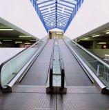 Escalera móvil para la alameda de compras y el centro comercial