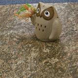 جيّدة بالجملة [روو سورفس] خزي حجارة حبّة [سرميك تيل] ([لف66046ج])