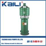 Pompe ad acqua sommergibili elettriche a più stadi di QD&Q (QD10-40/3-2.2)
