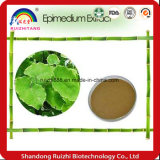 Estratto organico del Epimedium dell'erba inc Icariin 50% 60% 80% 98%, polvere cornea dell'estratto del Weed della capra, Iiariin