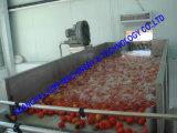 De volledig-automatische Wasmachine van het Fruit/de Grote Plantaardige Wasmachine van de Capaciteit