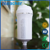 De binnen huis-Gebruikte Filter van de Kraan van het Water
