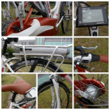 여자 고전적인 작풍 도시 전기 자전거