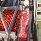 Sauce tomate faisant la chaîne de production de jus de fruits de machine