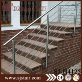 Балюстрада нержавеющей стали и древесины в лестнице разделяет (SJ-616)