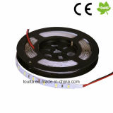 Lámpara impermeable de la tira del IP 65 los 60LEDs/M SMD 5630 LED