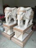 Statua di marmo dell'elefante, scultura di pietra nella parte anteriore il cancello, elefante Stautue, elefante per la nuova casa della decorazione
