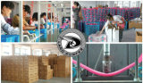 De Raad van de stuiver van Originele Fabriek En71/En13613 Goedgekeurd Plastic Skateboard