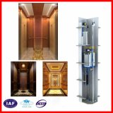 مسافرة مصعد [مرل] [فّفف] آلة غير مسنّن [رووملسّ] صامد للصدإ
