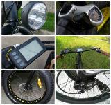 Fetter Gummireifen 26 Zoll-elektrisches Fahrrad mit Samsung-Lithium-Batterie