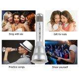 Micrófonos inalámbricos Karaoke, máquina de KTV 3-en-1 Bluetooth Karaoke (plata)