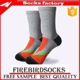 Der gekopierte Zoll Sports Socken