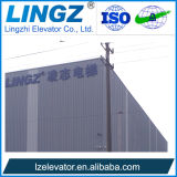 Вилла Lingz тавра высокого качества известные и лифт подъема дома