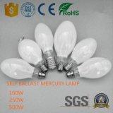 RoHS aprobados por la CE con un balastro de lámpara de vapor de mercurio de inundación Iluminación Outoor