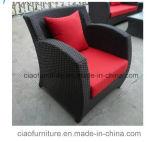 Sofà esterno del rattan del PE della mobilia del giardino della mobilia di Costco